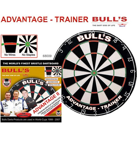 Trainer Bristle Board